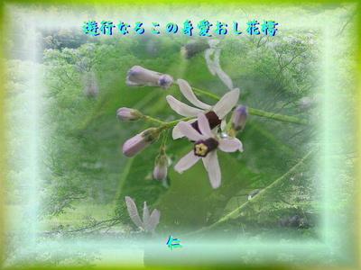 monomane575qv2004yugyounaru1s.jpg