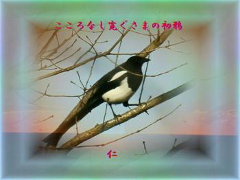 monomane575qz0303kokoronasi1r.jpg