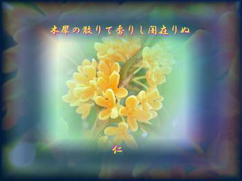 ryokannotabirp2302mokuseino1y.jpg