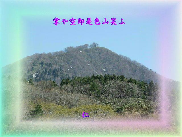 sairoku575z98tenohiraya1pin.jpg